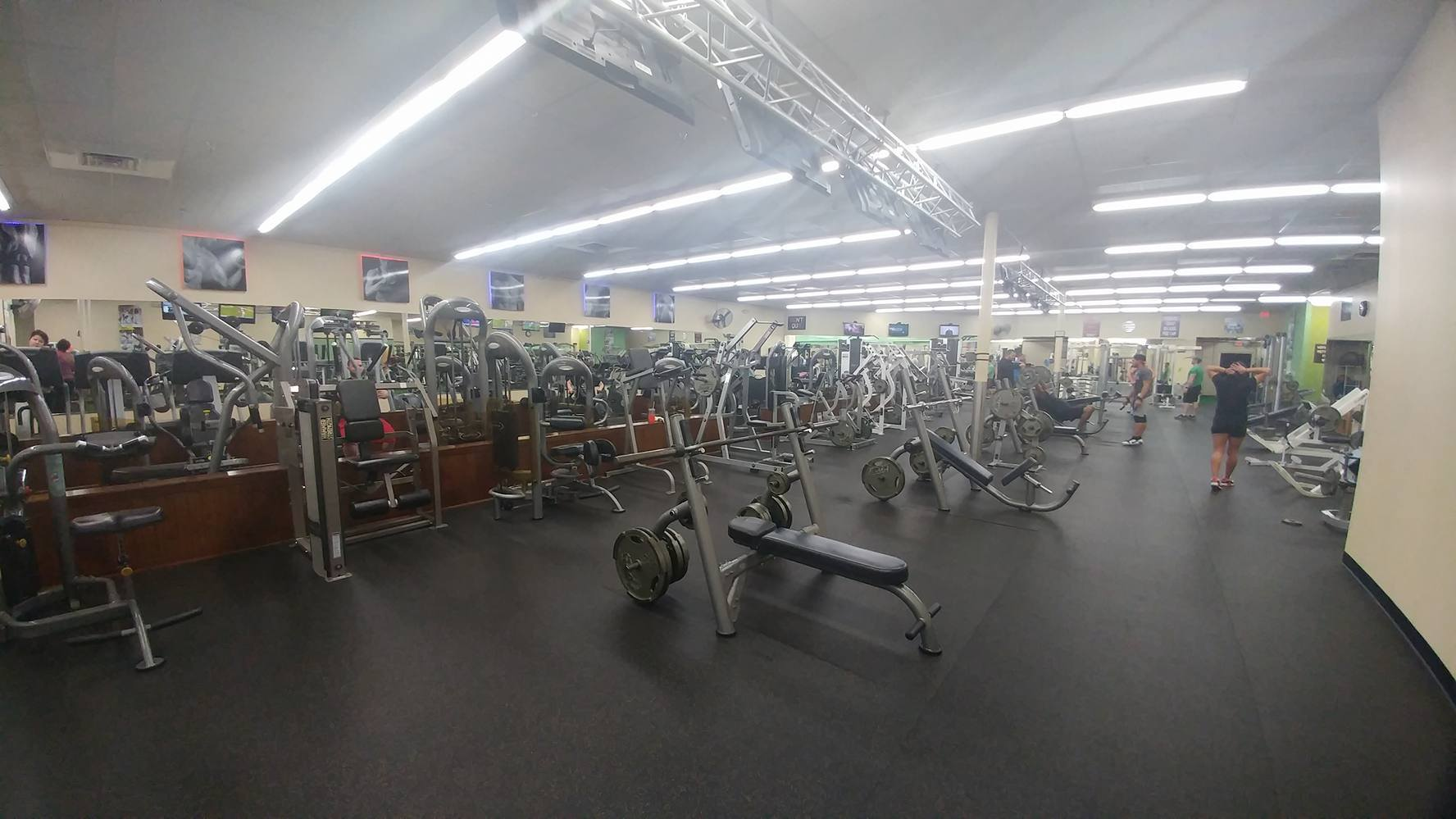 fitness gym pinellas park
