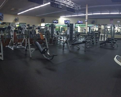 whole gym