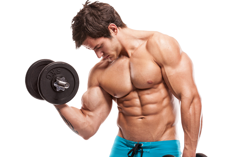 weight training kinetix gym pinellas park