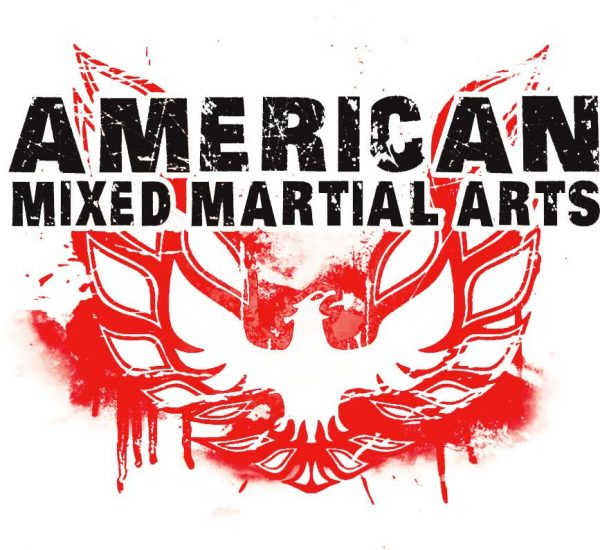 mma martial arts pinellas park